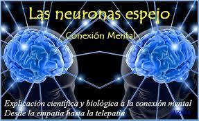 Resultat d'imatges de neuronas espejo