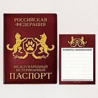 Российский <b>паспорт</b> в Казахстане. Сравнить цены, купить ...