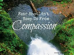 Image result for Compassion and Fear Picture