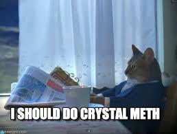 I Should Do Crystal Meth - One Percent Cat meme on Memegen via Relatably.com