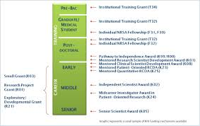 trends in nih training and career development awards nih graphic shows a selection of nih grant program and the approximate career stage in which people