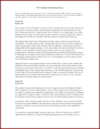 sample application letter essay