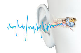 Image result for Ringing in the Ears (Tinnitus)