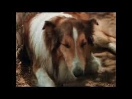 <b>Лесси</b> возвращается домой (1943) - YouTube