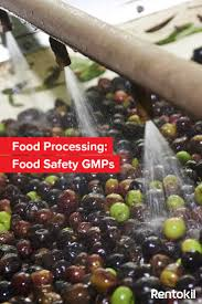 ideas about food safety standards elizabeth implementing good manufacturing practices for hygiene and pest control are essential for achieving food safety standards