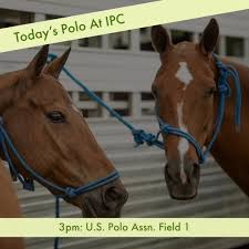 Today's <b>Polo</b> At IPC   3pm: Ylvisaker Cup... - International <b>Polo</b> Club ...