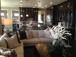 accent colors dark cabinets inspiring home