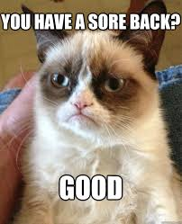 You have a sore back? GOOD - Grumpy Cat - quickmeme via Relatably.com