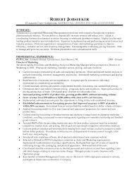 executive marketing director resume sample summary and cover letter executive marketing director resume sample summary and professional experiencemarketing president resume