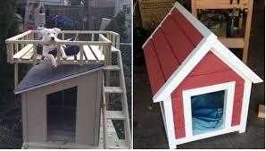 Cool DIY Dog House