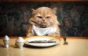 コンビニを活用◎21時以降に食べても太らない方法を教えます!!