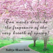 Image result for spring quotes images
