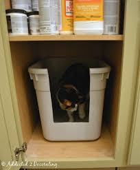 cat litter box built into the laundry room cabinetry with its own light and vent clever ideas pinterest litter box cat litter boxes and the laundry bookcase climber litter box