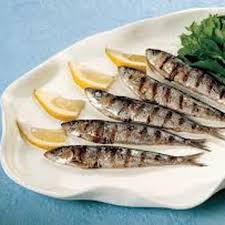 Risultati immagini per sardine alici