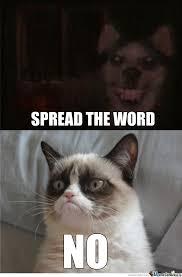 Smile.dog vs. Grumpy cat | Grumpy Cat | Know Your Meme via Relatably.com