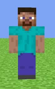 Image result for minecraft steve