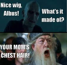 16 hysterical 'Mean Girls' and 'Harry Potter' mash-ups via Relatably.com