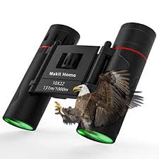 Binocular 10x22 Compact Binoculars Mini Folding ... - Amazon.com