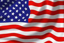 Image result for USA FLAG