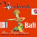 Bali album by The Wondermints