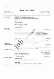 Resume For Federal Government Jobs  resume format of the account     happytom co Resume Sample For Government Job Government Resume Format   http   www resumecareer