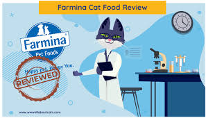 Unbiased <b>Farmina Cat</b> Food Review 2020 - We're All About <b>Cats</b>