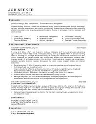 Business Resume Format  resume template business analyst resume     eluded co