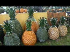 Mexican <b>Handcrafted Pottery Pineapple</b> from Morelia | Art | Mexican ...