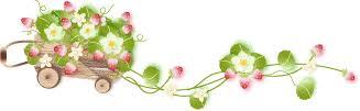 Image result for รูปดอกไม้เล็กๆน่ารัก