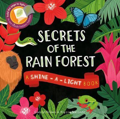 Image result for secrets of the rainforest