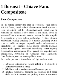 Flora d'Italia - Chiave Fam. Compositeae