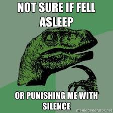 NOT SURE IF FELL ASLEEP OR PUNISHING ME WITH SILENCE ... via Relatably.com