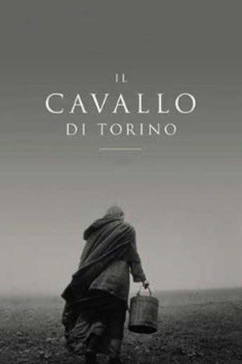 Risultato immagini per Il Cavallo di Torino