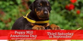 PUPPY MILL AWARENESS DAY - Third Saturday in September ...