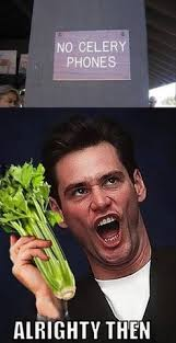 ACE VENTURA *all righty then* \^_^/ on Pinterest | Jim Carrey ... via Relatably.com