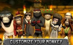Image result for monkeys