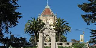 university of san francisco essay