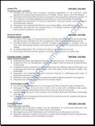 sample professional resume getessay biz real help provide you professional anylist sample sample professional