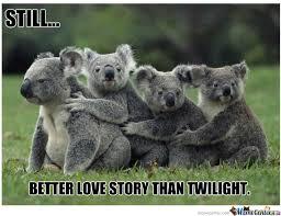 Koala Memes. Best Collection of Funny Koala Pictures via Relatably.com