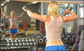 Garage Gym <b>Mirrors</b> - Where to Buy Affordable, Large Gym <b>Mirrors</b>