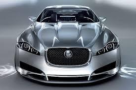 Bildergebnis für jaguar gesicht
