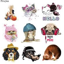 Compare Prices on <b>Baby</b> Cat Shirt- Online Shopping/Buy Low Price ...