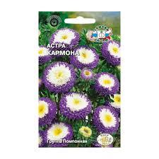 <b>Семена Астра помпонная</b> Кармона - купите по низкой цене в ...