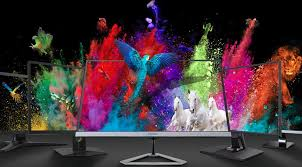 What is an <b>IPS</b> Monitor? Monitor Panel Types Explained | ViewSonic ...