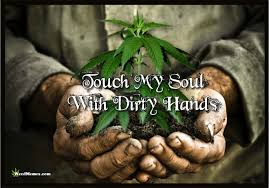 Grow Weed Memes - Weed Memes via Relatably.com