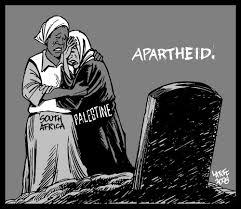 apartheid essay   adorno essay on wagnerapartheid essay