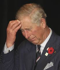 Image result for prince of wales