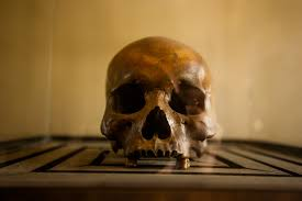 echoes of genocide art zaratsyan social documentary photography a human skull one of hundreds of thousands prisoners who never made it out of