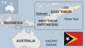Image result for east timor atrocities