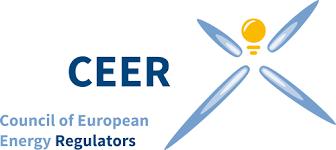 <b>FROG</b> report + PR - ceer.eu